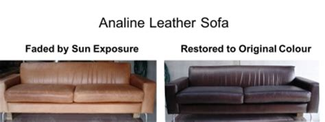 analine leather sofa color glo international auckland 14a atarangi road