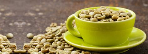 Coffe Green green coffee bean extract facts benefits healthkart