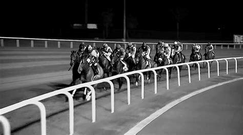 longines le sport equestre est notre passion tbtc trop bon trop  tapage