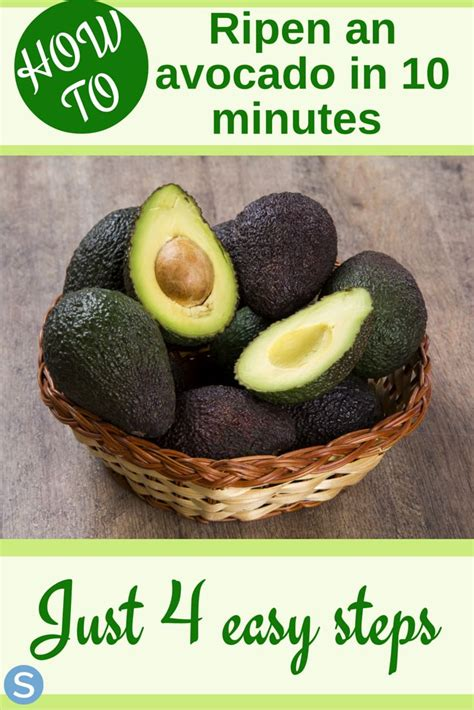 Tips Using Avocados by 17 Best Ideas About Ripen Avocado On How To