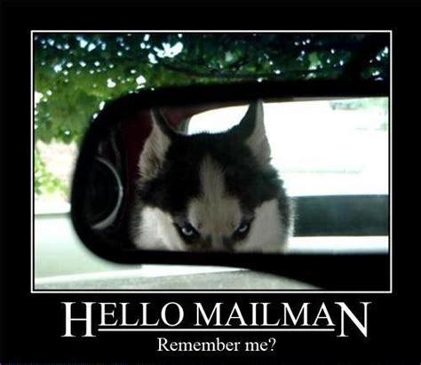 Remember Me Meme - hello mailman remember me weknowmemes