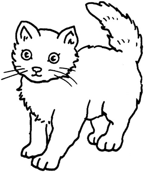 Two Cats Outline by Free Printable Cat Pictures Free Clip Free Clip On Clipart Library
