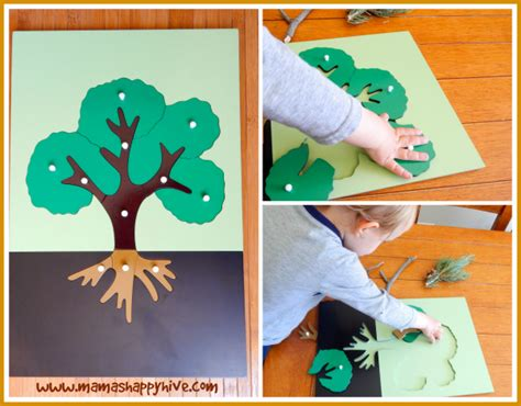 montessori tree printable montessori inspired botany tree exploration mama s happy