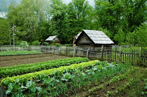 vegetable gardens decker rd seeds