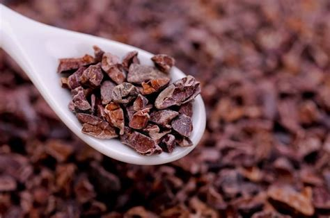 cocoa nibs health benefits of raw cacao nibs livestrong com
