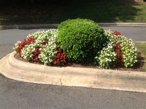 green earth landscaping about us green earth landscaping llc