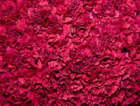 texture pattern photoshop download 12 floral texture photoshop images free photoshop flower