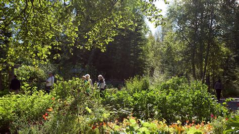 botanical gardens anchorage alaska botanical garden anchorage alaska attraction