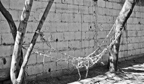 hamaca va con h 366 fotos la hamaca regiomontana