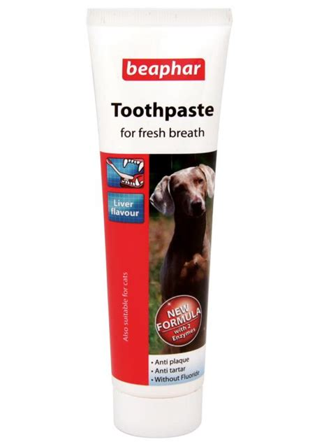 can you use human toothpaste on dogs 10 best grooming products the independent