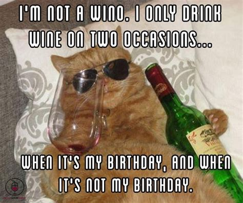 Wine Birthday Meme - funny wine meme blog your wine