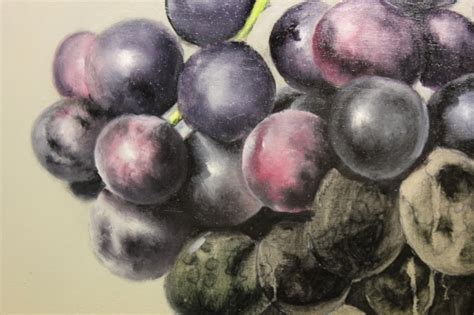 how to paint grapes purpose of and soft edges in