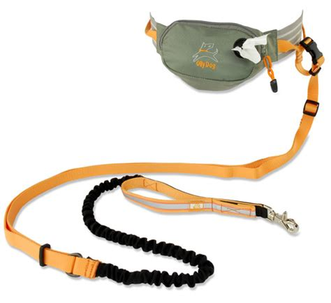 best leash for running runners leash