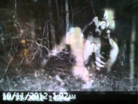 zombie caught by trail night cam youtube