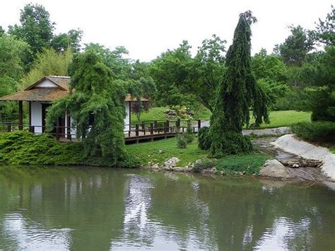 Japanese Garden Springfield Mo by L Jpg