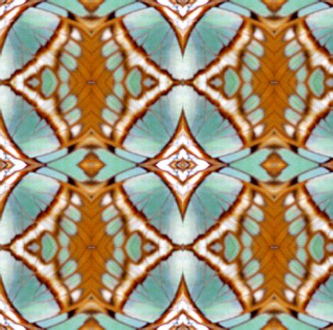 natural butterfly wing geometric fabric ravynscache