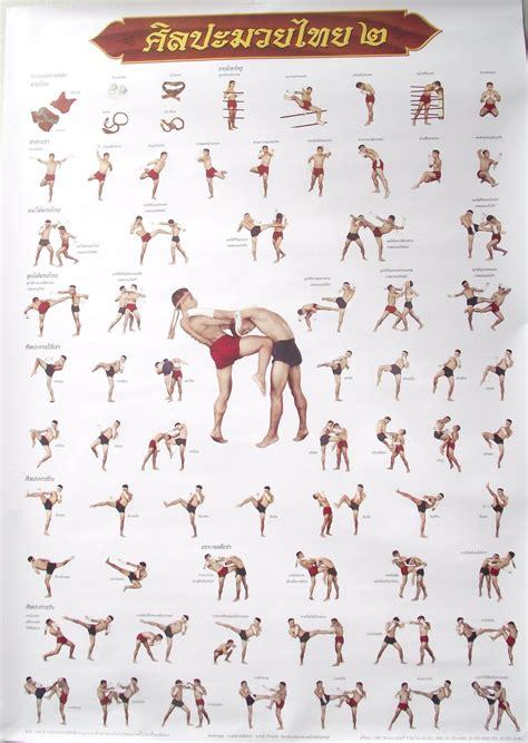 muay thai techniques poster images