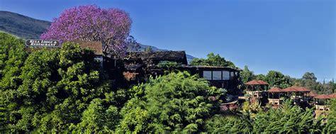 House Plans For Views kula lodge amp restaurant kula maui upcountry maui