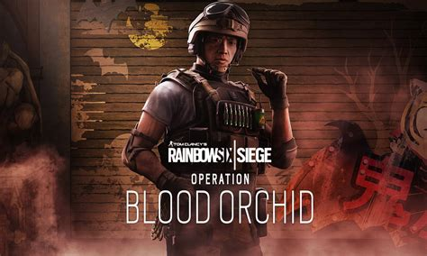 siege aphp avenue rainbow six siege blood orchid 100 images tom