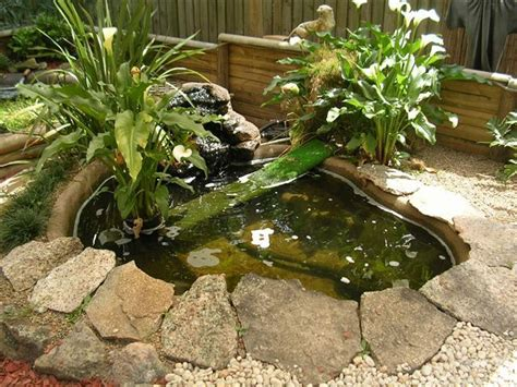 backyard turtle pond turtle pond build it and they will come turtle ponds
