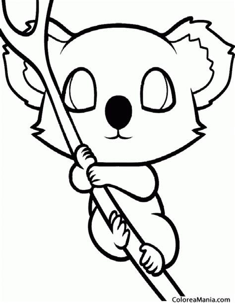 dibujos para colorear koala colorear koala bien agarrado animales del bosque dibujo