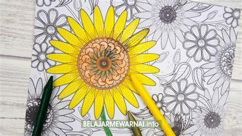 koleksi mewarnai gambar bunga matahari