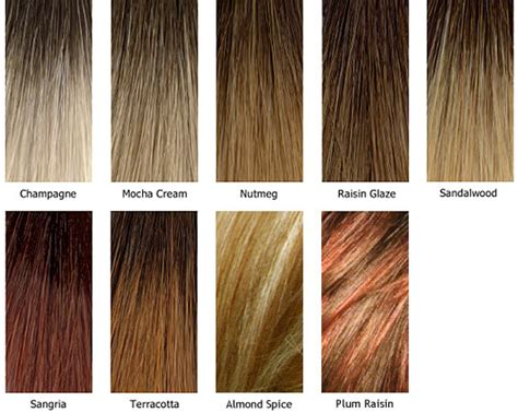 nutmeg hair color nutmeg hair color nutmeg 7wv brown hairs