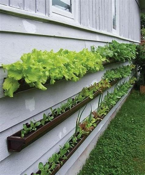 Cool Vegetable Garden Ideas Get Started Growing 5 Easy Small Vegetable Garden Ideas To Try Apartment Therapy