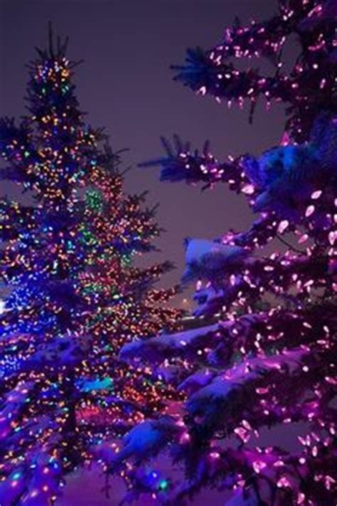 1000+ images about christmas trees and lights on pinterest