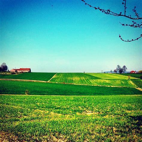 Landscape Forms Instagram Bene