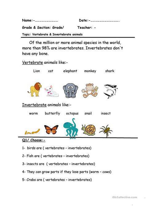 Free Printable Worksheets Vertebrates Invertebrates   vertebrate invertebrate worksheet free esl printable