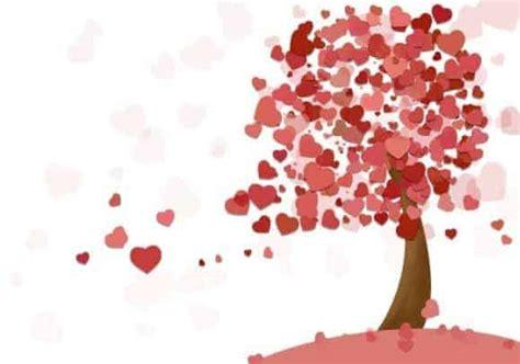 Jual Bibit Bunga Mawar Di Makassar promo valentines day 2018 bibit