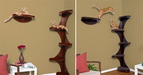 minimalist cat tree furniture accessories wooden cat tree design with