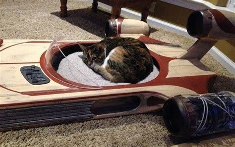 human sized dog bed this homemade star wars landspeeder pet bed is totally the