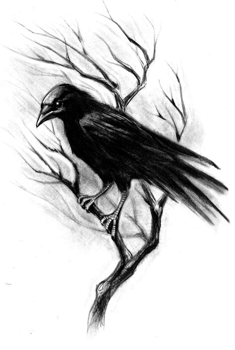 crow tattoo design 14 designs sles and ideas