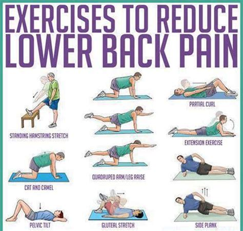 easy exercises to help reduce lower back health