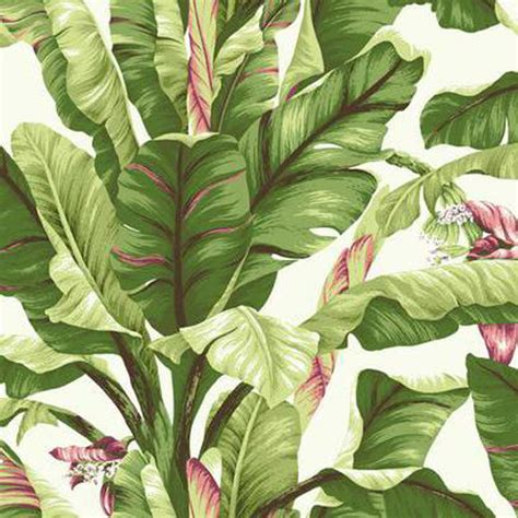 bananas leaf wallpaper banana leaf wallpaper lelands wallpaper