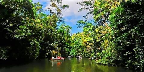 boat trader costa rica the best costa rica tours and activities with pacific