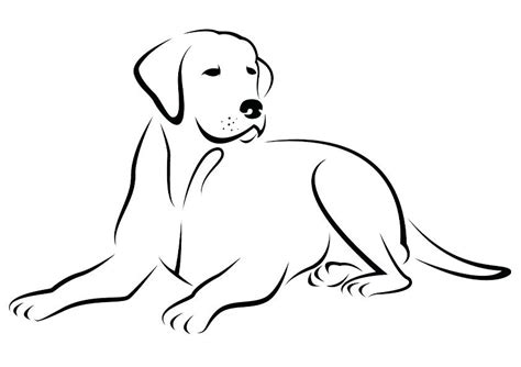 labrador coloring pages labrador retriever coloring pages retriever coloring pages