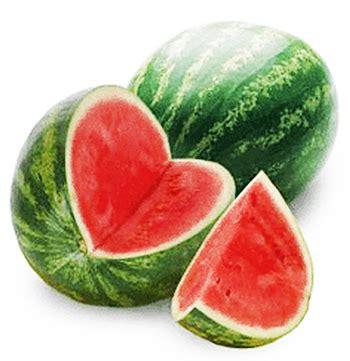 Benih Buah Semangka jual benih bibit biji buah semangka big tanpa biji jogja
