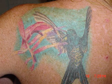 pam s back tattoo pam s hummingbird tat picture