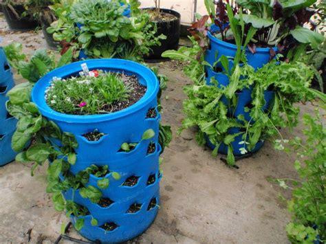 Sendok Sayur Lubang By Kitchenmate media pendidikan alternatif budidaya tanaman secara