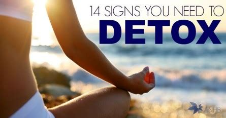 Signs You Need To Detox by All Home And The Best Of The