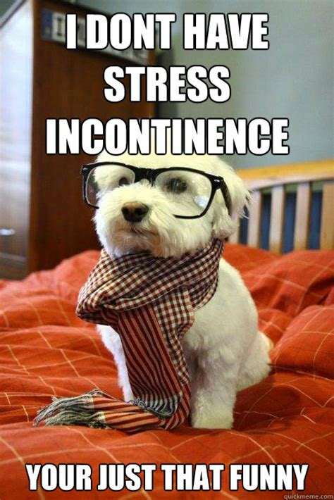 Funny Stress Memes - i dont have stress incontinence your just that funny