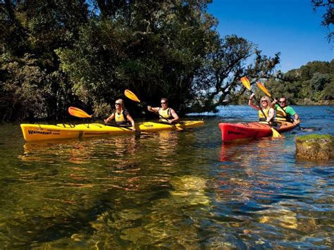best tours the best 5 kayaking tours in new zealand kayak new zealand