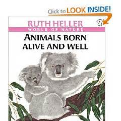 born heller meaning my montessori journey oviparous and viviparous animals