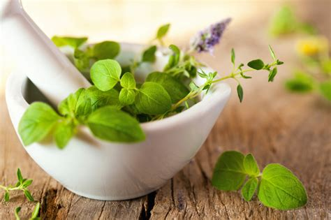 Homeopathic And Herbs For Skin Detoxing by Growing Trend Of Alternative Medicine Smart Healthy