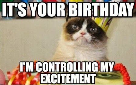 Cat Happy Birthday Meme - 10 witty cat happy birthday meme 2happybirthday
