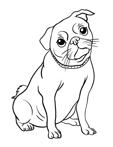 printable pug coloring page free pdf download at http