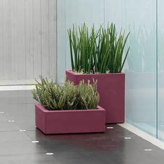 vaso da interno moderno 1000 images about vasi per piante on stiles